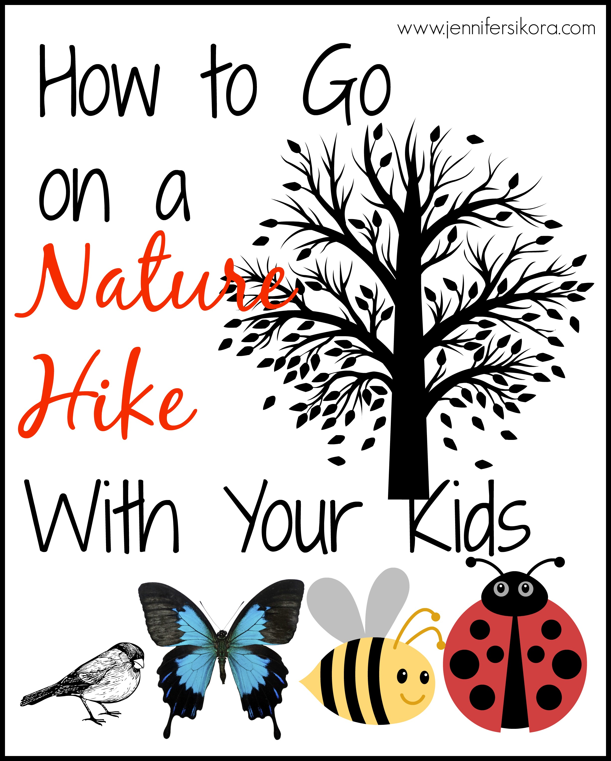How to Go on a Nature Hike #Homeschooling