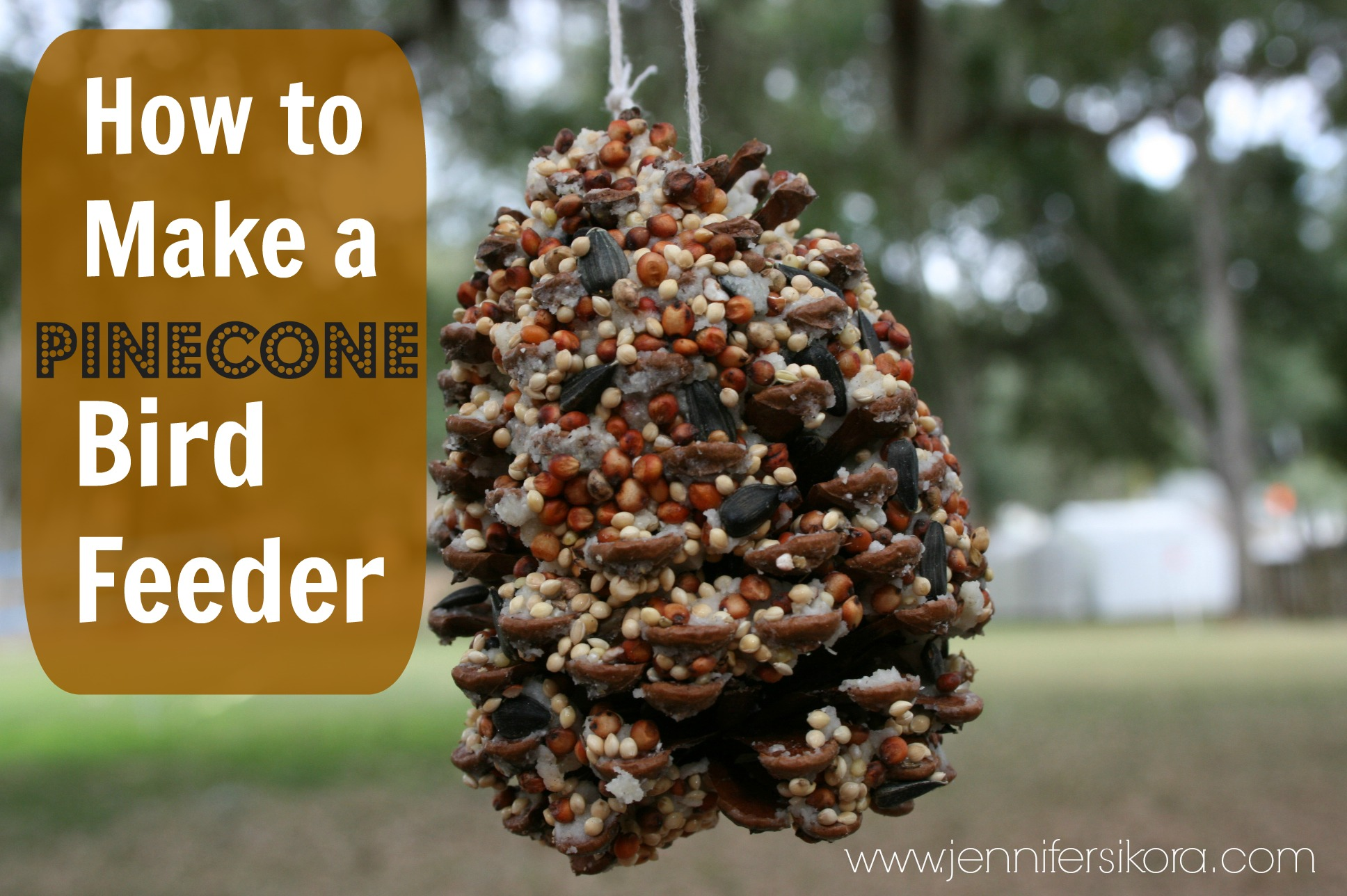 how to make a homemade bird feeder jen around the world