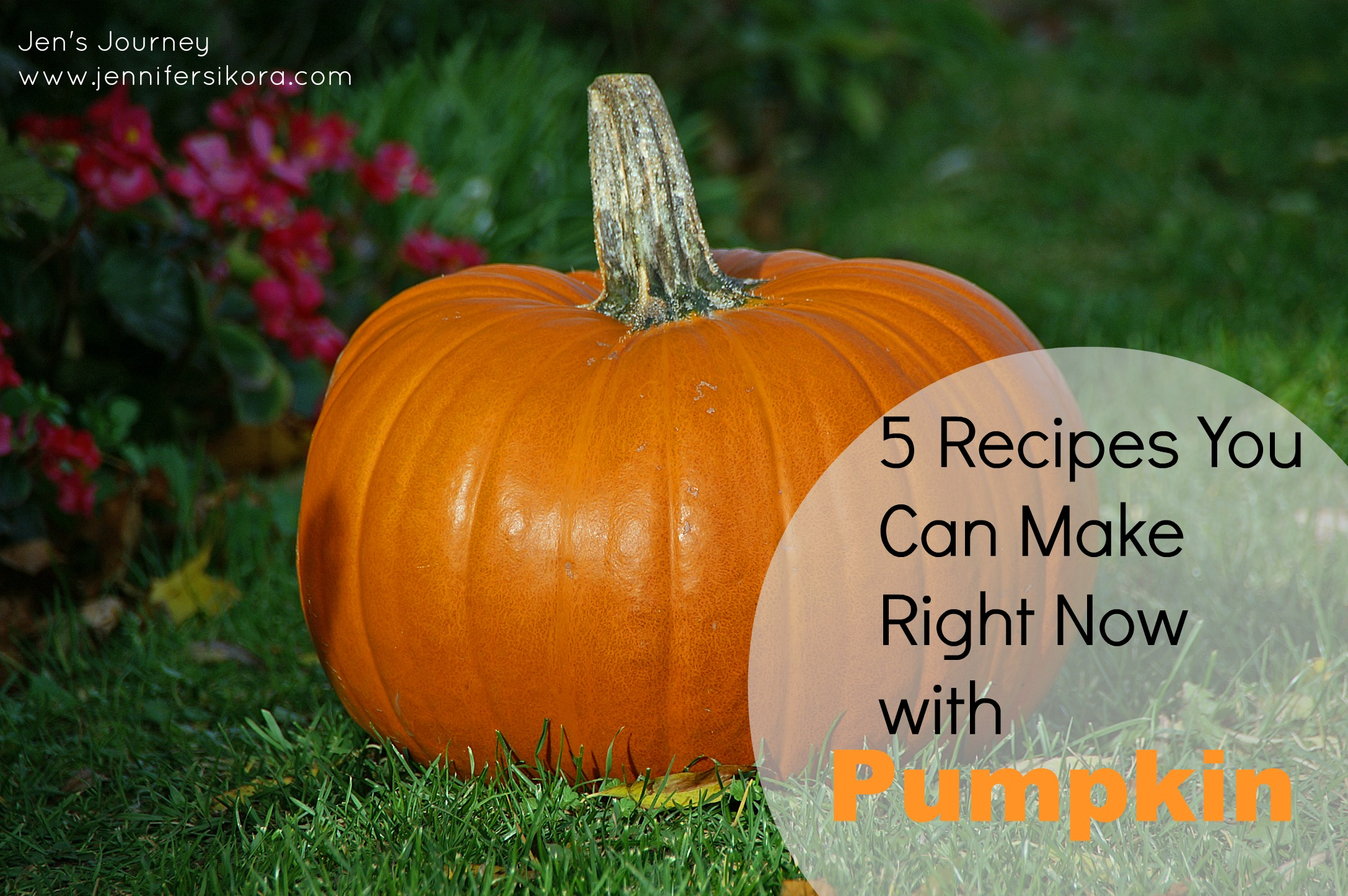5 Pumpkin Recipes You Can Make Right Now