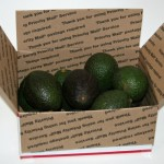 just-avocados--6-lbs-6729