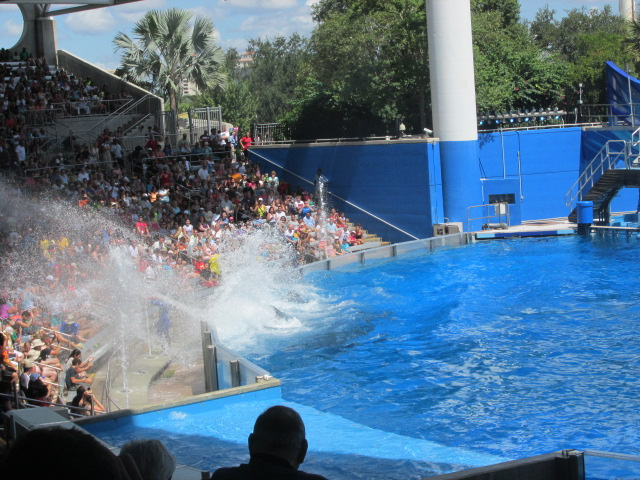 Wordless Wednesday – Shamu Splashing the Crowd