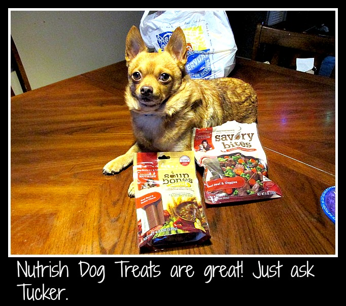 Tucker loves his Nutrish Dog Treats. They are yummy and healthy for him. Click through to read my review on them and to see how well he likes them.