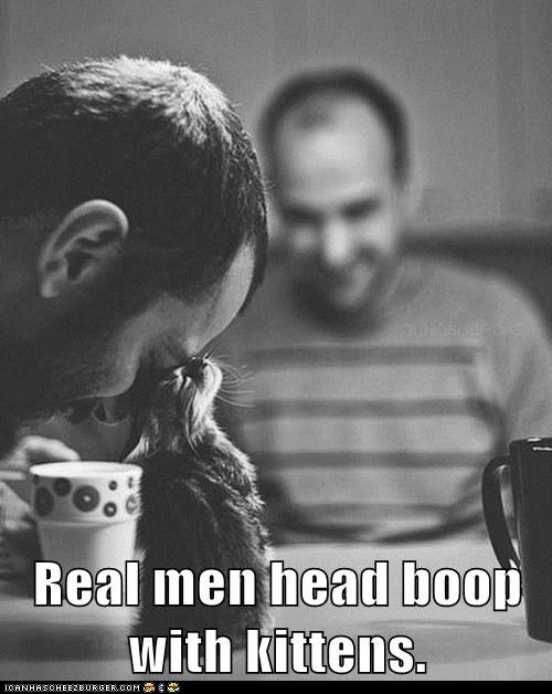 Real Men Head Boop Kitty Cats — or at least that is what my daughter says #curiouscat