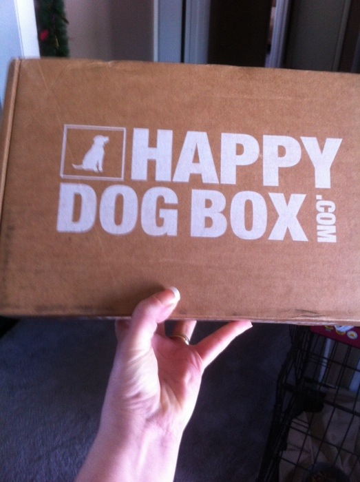 Make Your Dog a Happy Dog with a Happy Dog Box
