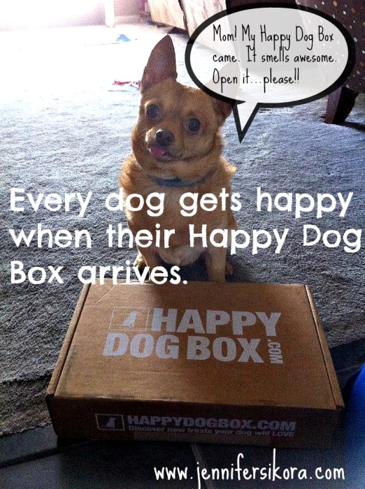The Day our Happy Dog Box arrived. Mom -- open it already!