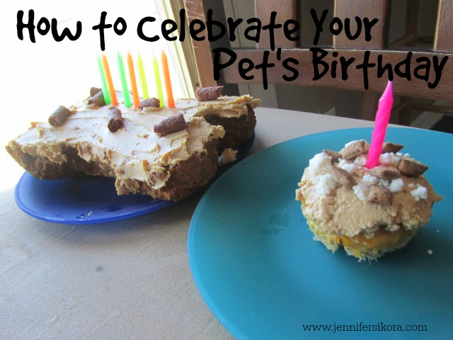How to Celebrate Your Pet's Birthday