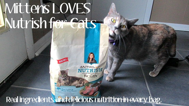 Dinner for Two Featuring Nutrish For Cats New Salmon and Brown Rice Recipe
