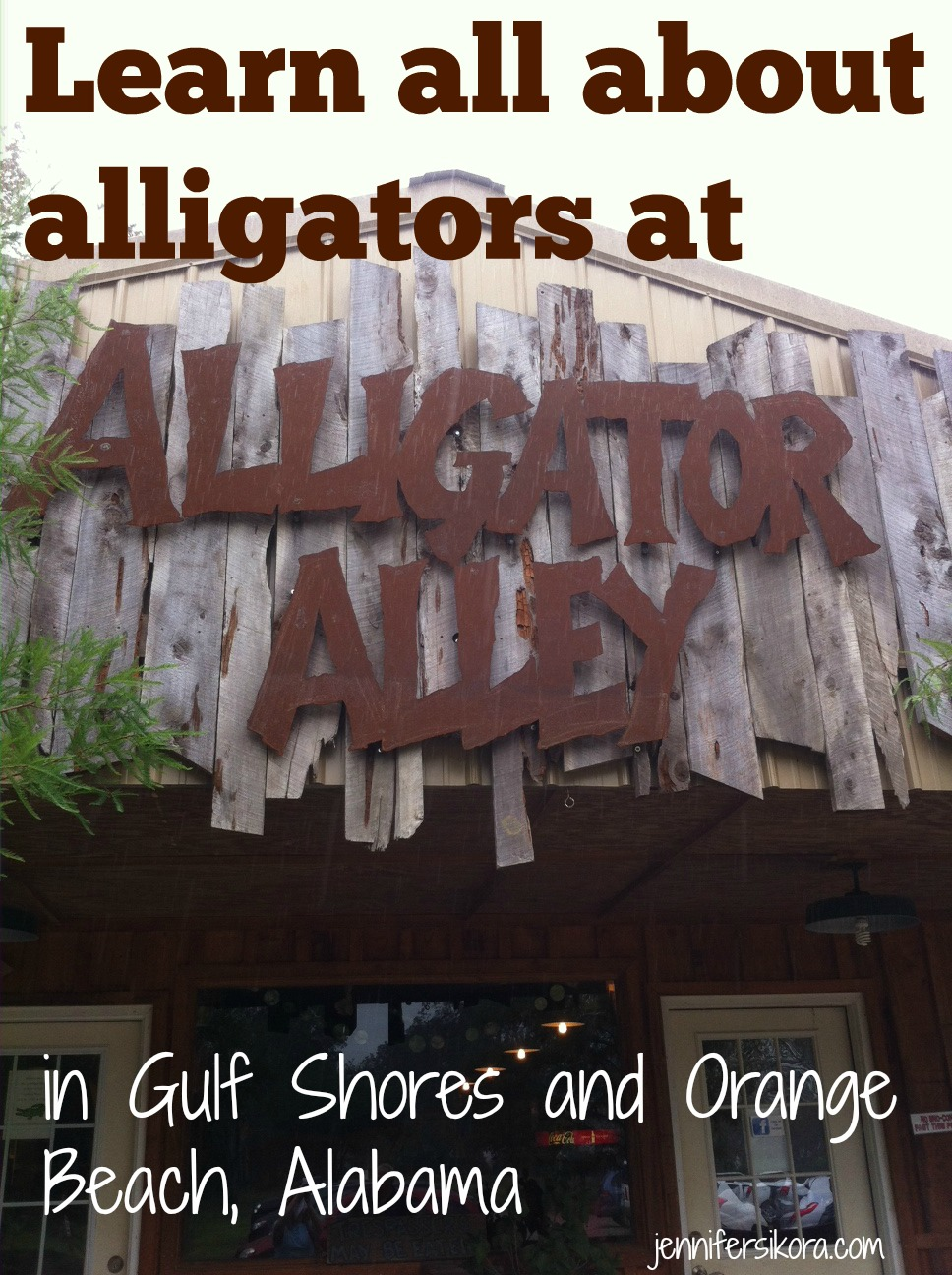 Alligator Alley at Gulf Shores and Orange Beach Alabama