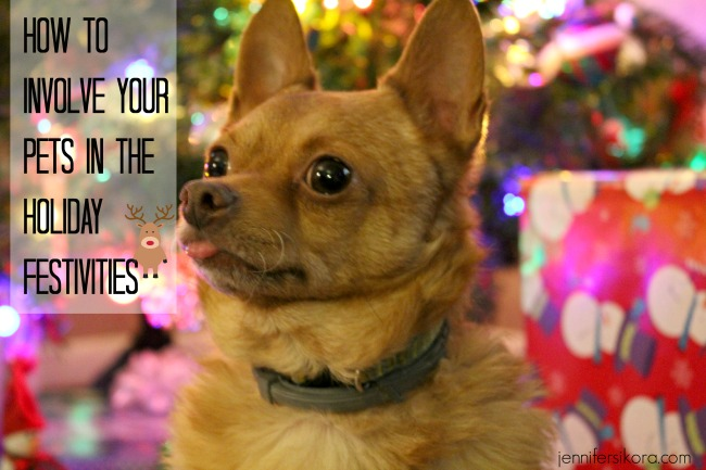How to Involve Your Pets in the Holiday Festivities