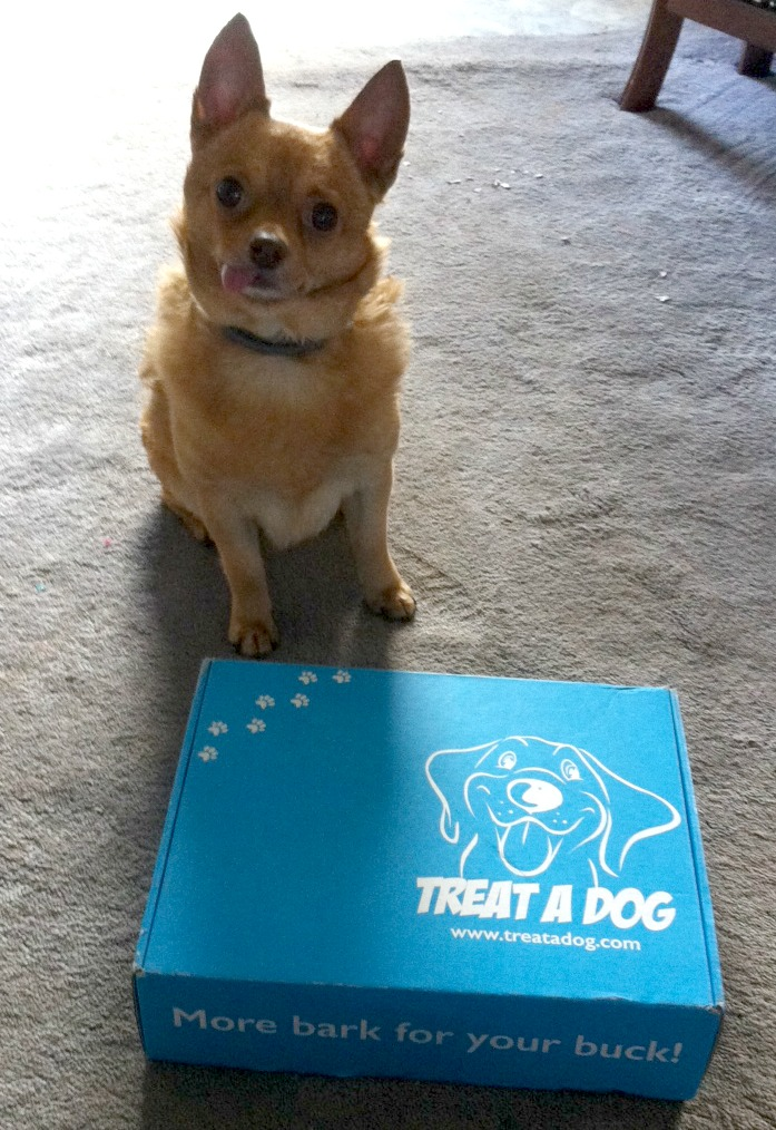 Treat a Dog Monthly Treat Box