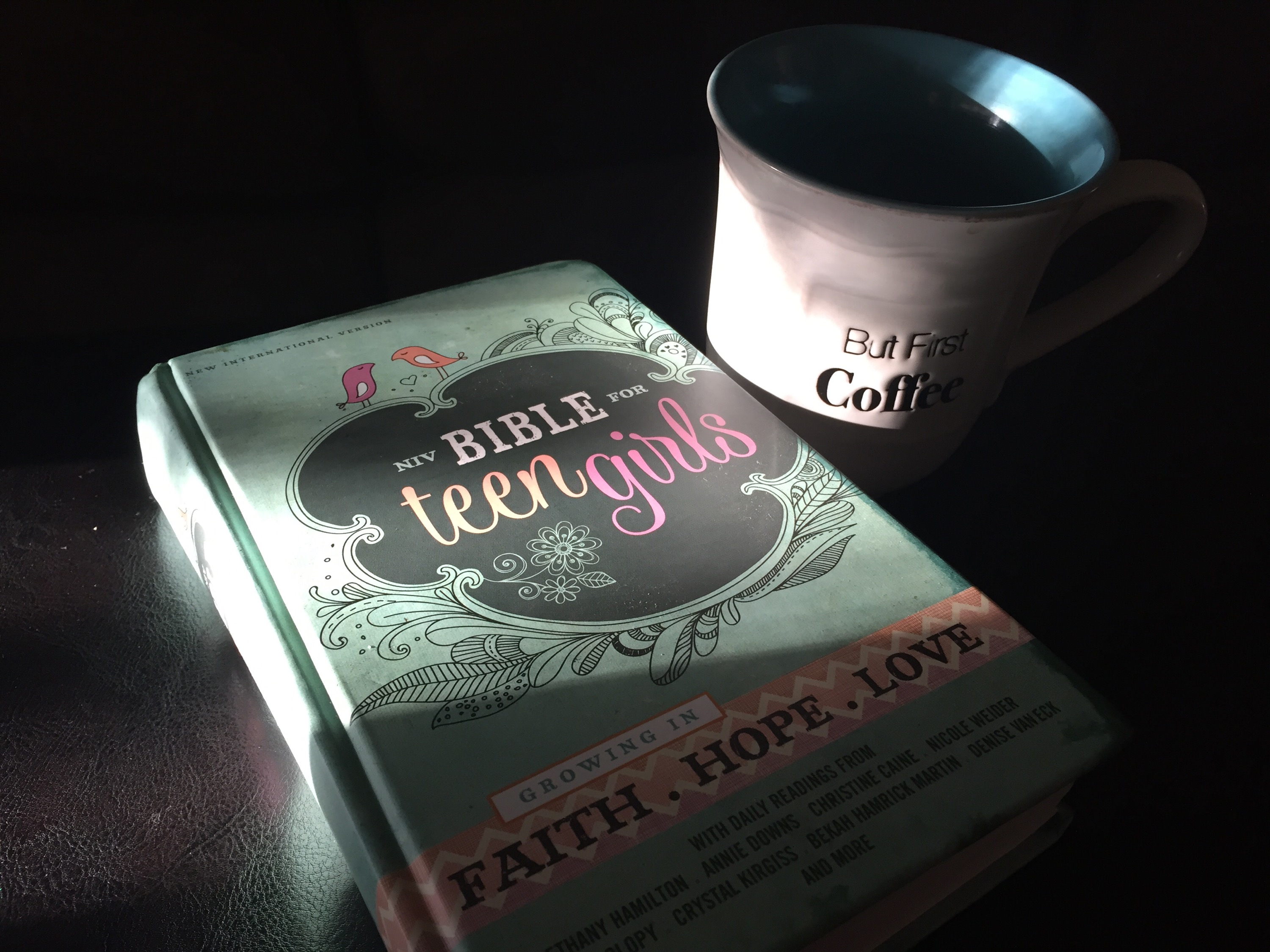 NIV Bible for Teen Girls: Growing In Faith.Hope.Love (plus Giveaway)