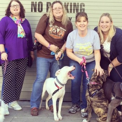 April is National Pet Shelter Volunteer Month