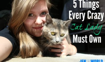 5 Things Every Crazy Cat Lady Needs
