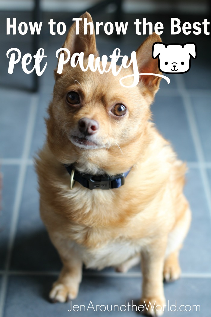 Nutrish Pet Pawty