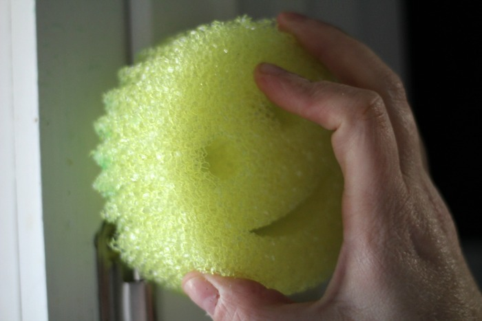 Spring Babblebox scrub daddy