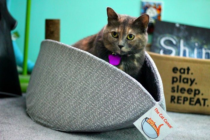The Cat Canoe is the perfect nestling spot for your kitty!
