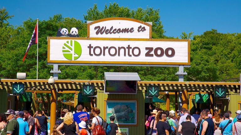 10 Toronto Attractions That You'll Love